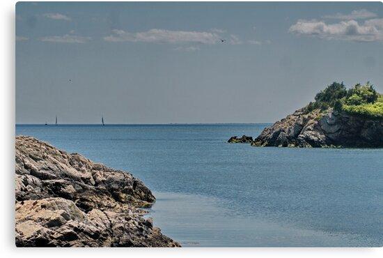 Looking Seaward by Barry Doherty