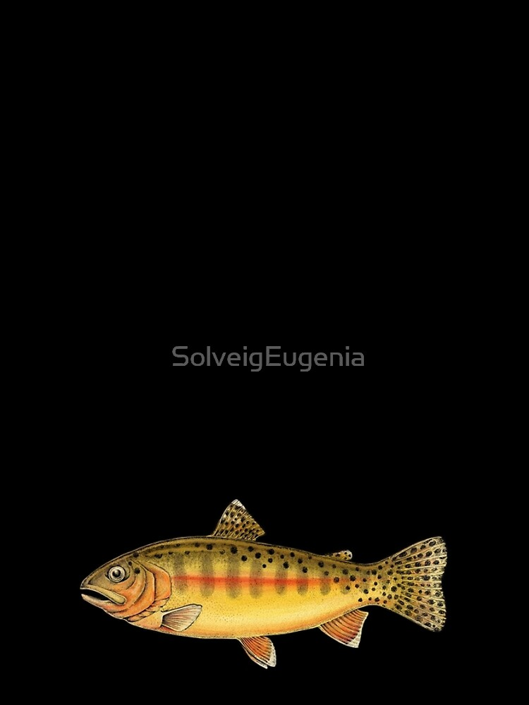 Golden Trout by SolveigEugenia