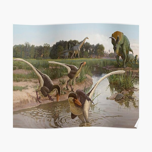 TRICERATOPS AND PREHISTORIC BIRDS Poster