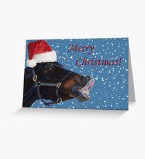 Funny Christmas Pony  Greeting Card