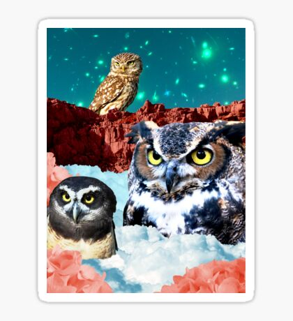 Kindly Owl Gods of the Red Mesa Sticker
