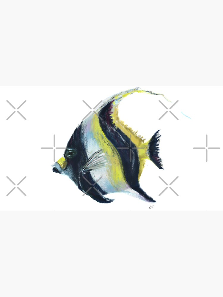 Banner fish  by ebozzastudio
