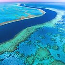Hardy Reef by Jill Fisher