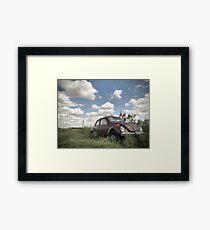 Odessa Beetle Framed Print