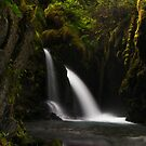 Virgin Creek Falls #1 by akaurora