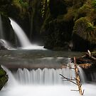Virgin Creek Falls #2 by akaurora
