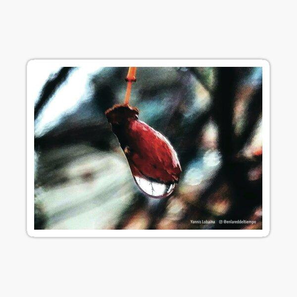 Red Dawn By Yannis Lobaina Sticker