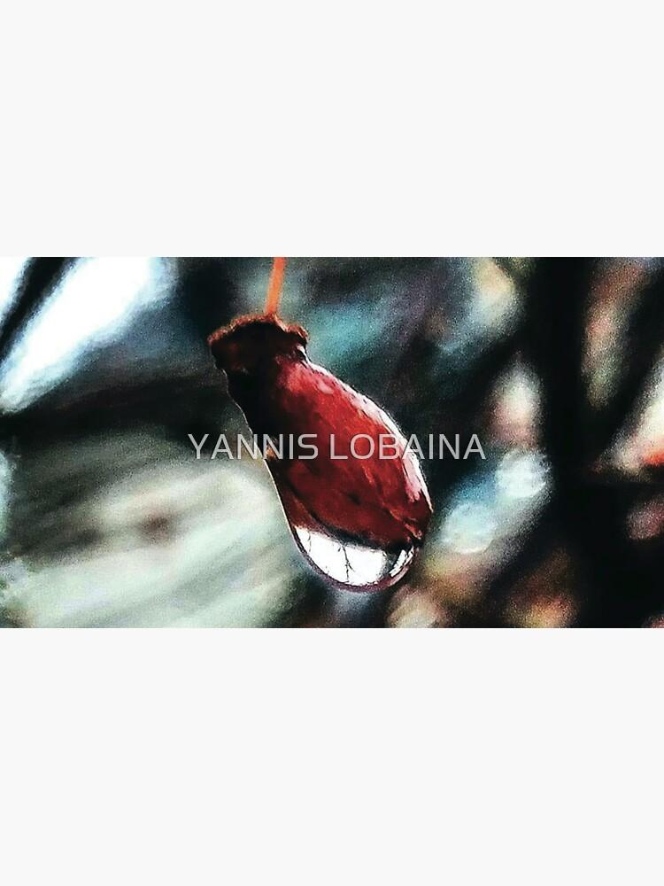 Red Dawn By Yannis Lobaina by lobaina1979