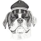 Boxer with cap by doggyshop