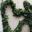 In the heart of a garden; Vine sculpting; La Mirada, CA USA by leih2008
