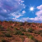 Desert Sun Shine by Lani Chipman