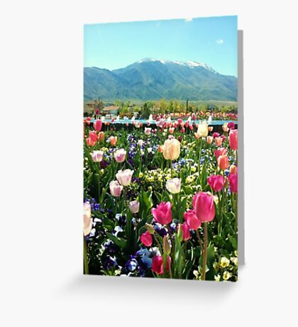 Smiling Tulips Greeting Card