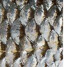Tarpon Scales Mermaid by Statepallets