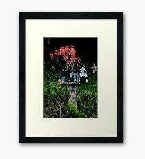 Rural Mail Framed Print