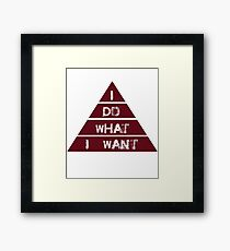 I Do What I Want, Sarcastic, Funny Joke, Humorous Framed Print