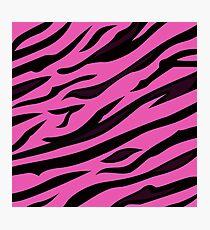 Animal background pattern - pink tiger skin texture. Background texture of pink tiger skin Photographic Print
