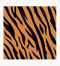Animal background pattern - tiger skin texture. Background texture of tiger skin Photographic Print