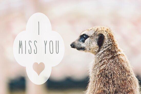 Miss You Meerkat by Vicki Field