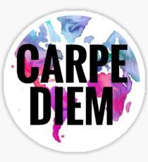 Watercolor World Carpe Diem Sticker