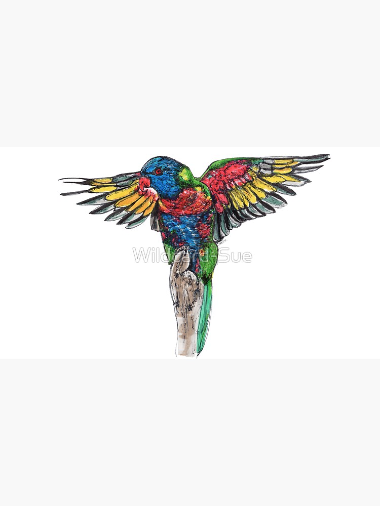 Delilah the Rainbow Lorikeet by Wildcard-Sue