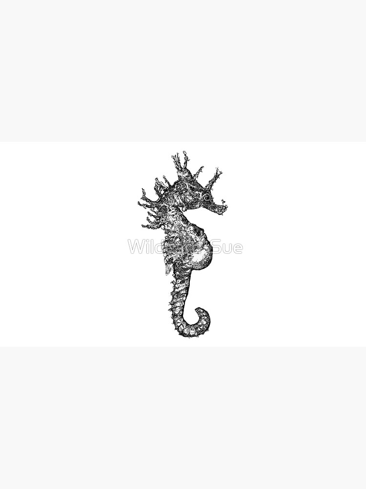 Dave the Seahorse  by Wildcard-Sue