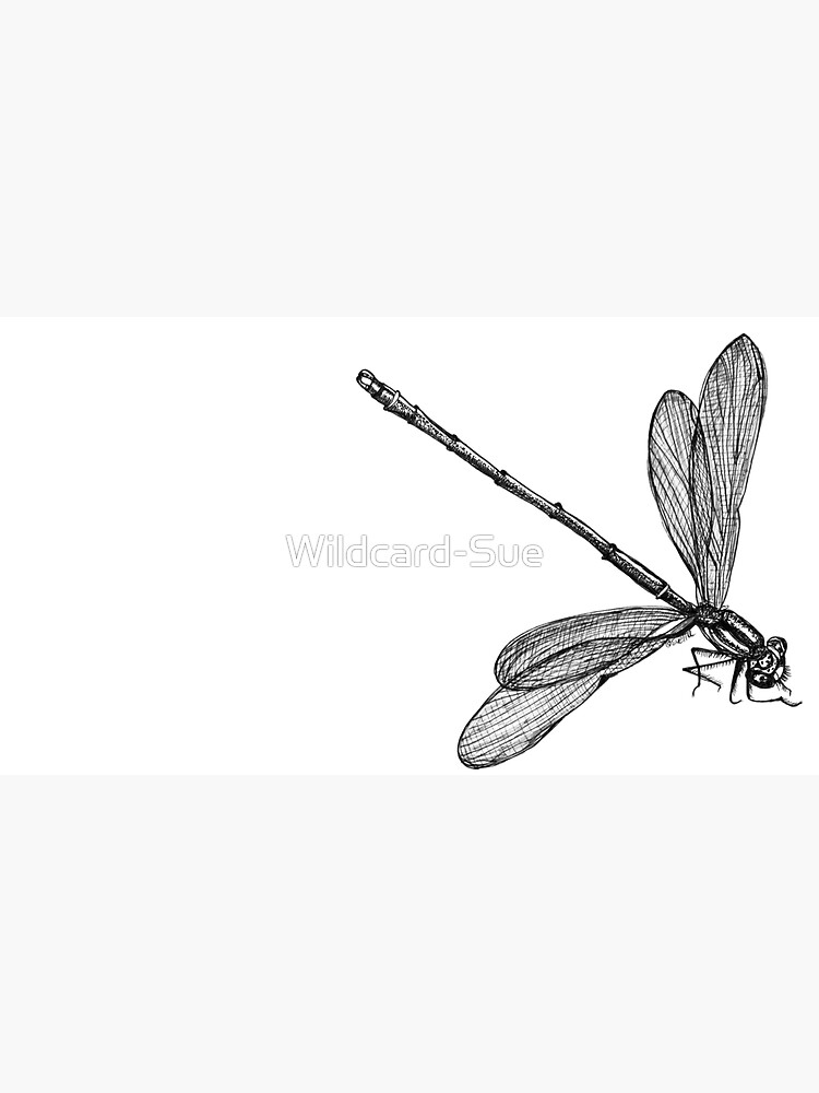 Eve the Dragonfly  by Wildcard-Sue