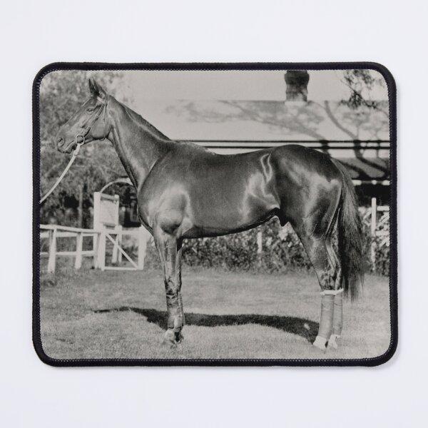 Champion Australasian racehorse Phar Lap. Mouse Pad