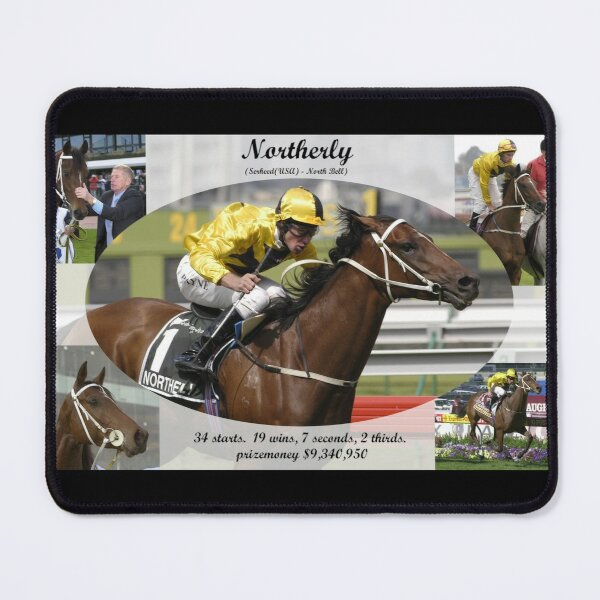 Northerly career tribute Mouse Pad