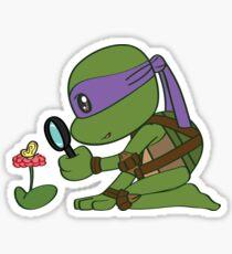 Precious Turtles - Donatello Sticker