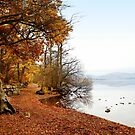 Early morning at Ullswater, Lake District by Victoria Ashman
