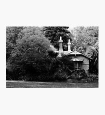 Garden in Balck & White Photographic Print