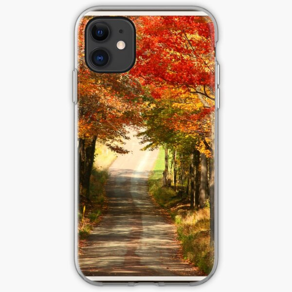 Autumn Path to Winter iPhone Soft Case