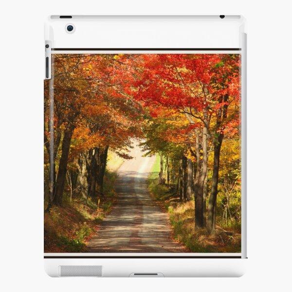 Autumn Path to Winter iPad Snap Case
