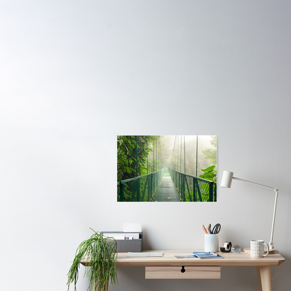 Suspension bridge in rainforest Poster
