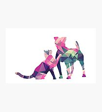 Moggy and Pooch #1. Pink&Green. Take your best friend everywhere. Photographic Print