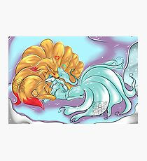 Ice and Fire Ninetails Photographic Print