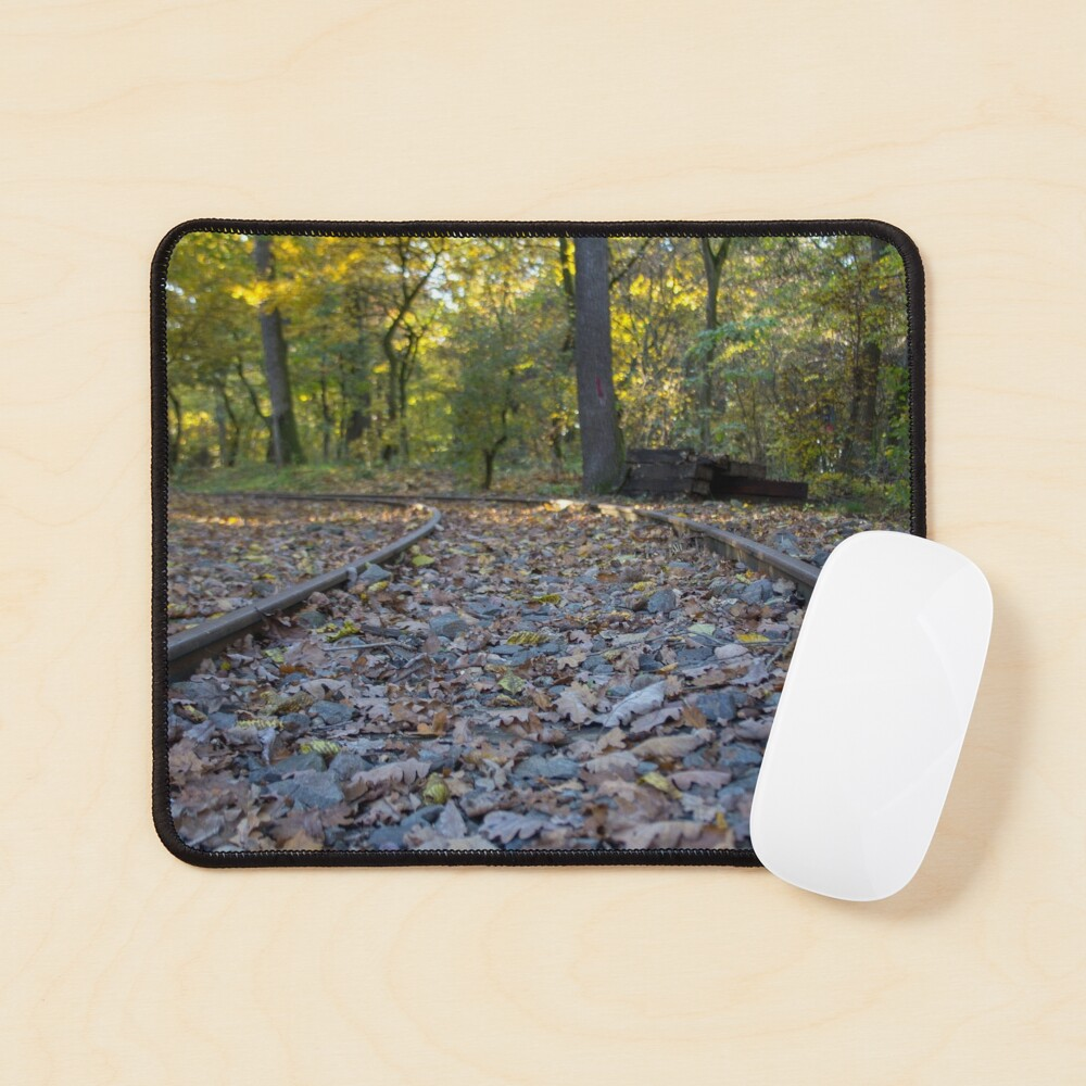 Railway through forest, pathway, partial shade, leaves on the ground, Autumn, original photography Mouse Pad