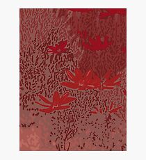Wild Meadow in Red Photographic Print