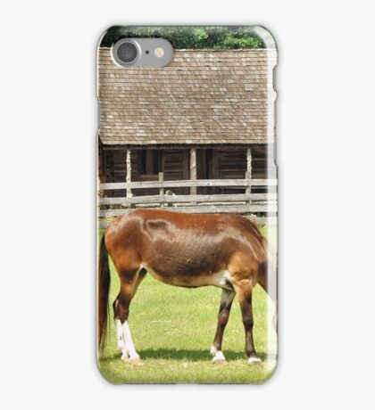 Country Mule iPhone Case/Skin