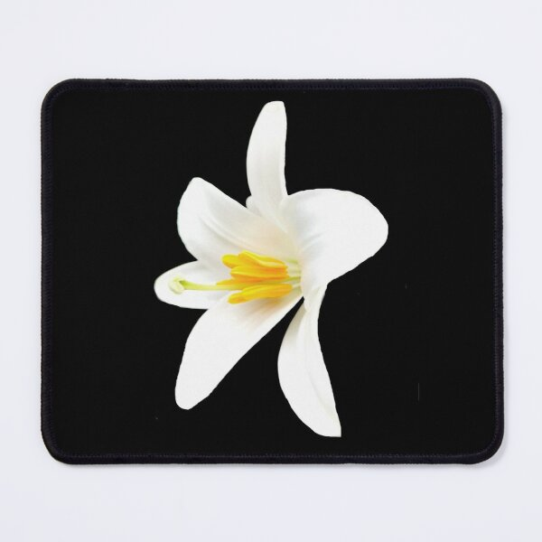 Isolated white lily Mouse Pad
