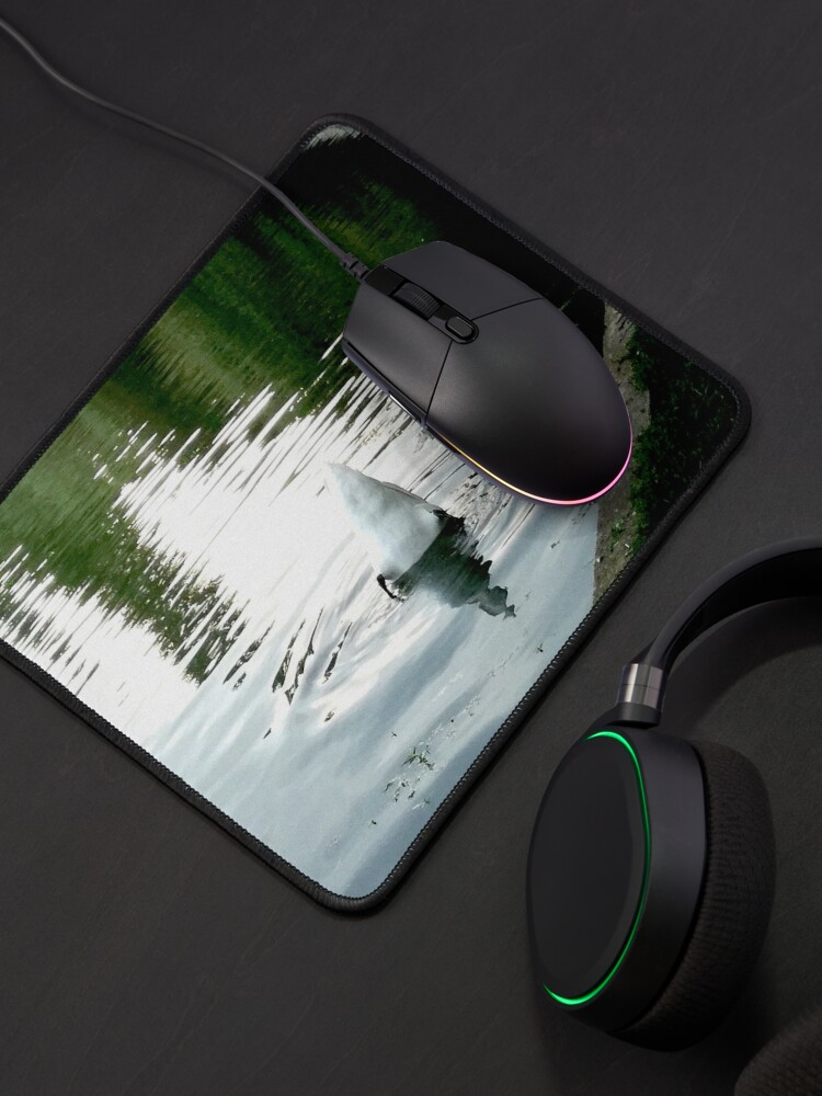 Alternate view of Duck with its head in the water and its white tail up on a lake with water with green reflections from the willows on the edge and blue from the sky Mouse Pad