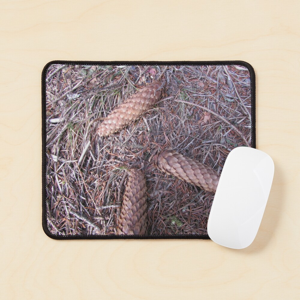 Three brothers on a forest Mouse Pad