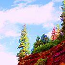 Rainbow trees by Lani Chipman
