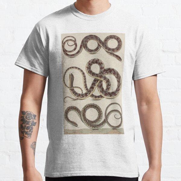 SNAKES Reptiles by Albertus Seba Classic T-Shirt