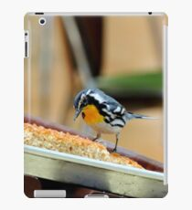The Pastry Thief iPad Case/Skin