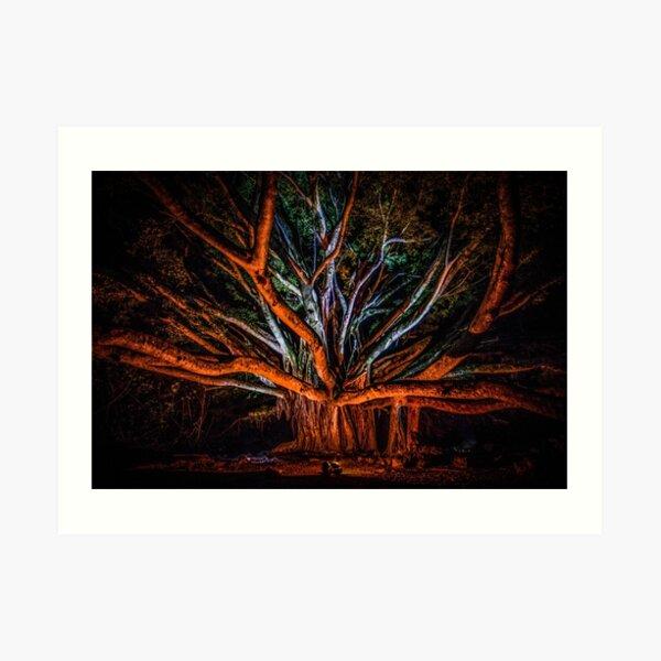 Tree Embrace Minimalist Tree Art Brancusi Inspiration The Kiss Abstract Tree Abstract Nature Photo Texture Photo Tree Photo