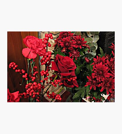 Scarlet Sensation - Winter Flowers and Berries Photographic Print