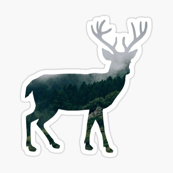 Buck Deer with Misty Evergreen Forest Woods Silhouette - Spirit of the Wild .  Sticker
