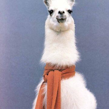 llama by ToastCrumbs