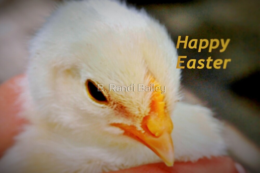 Happy Easter Chick by ♥⊱ B. Randi Bailey